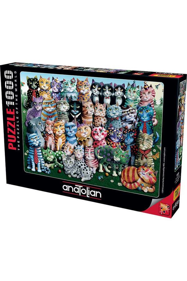 Anatolian - Aile Toplantısı / Cat Family Reunion