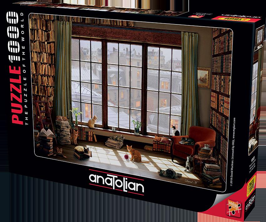 Anatolian - Pencere Kedileri / Window Cats