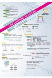 Tıpatıp Yayınları - Tıpatıp Yayınları YKS TYT Biyoloji Poster Notları